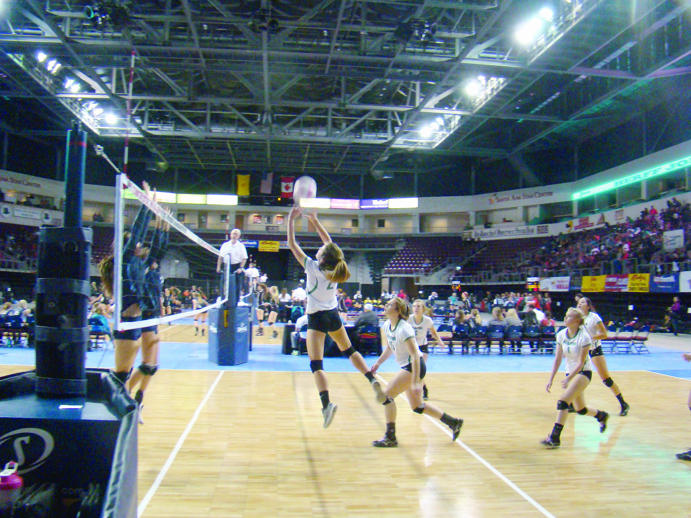Three area schools fall in state volleyball tournament