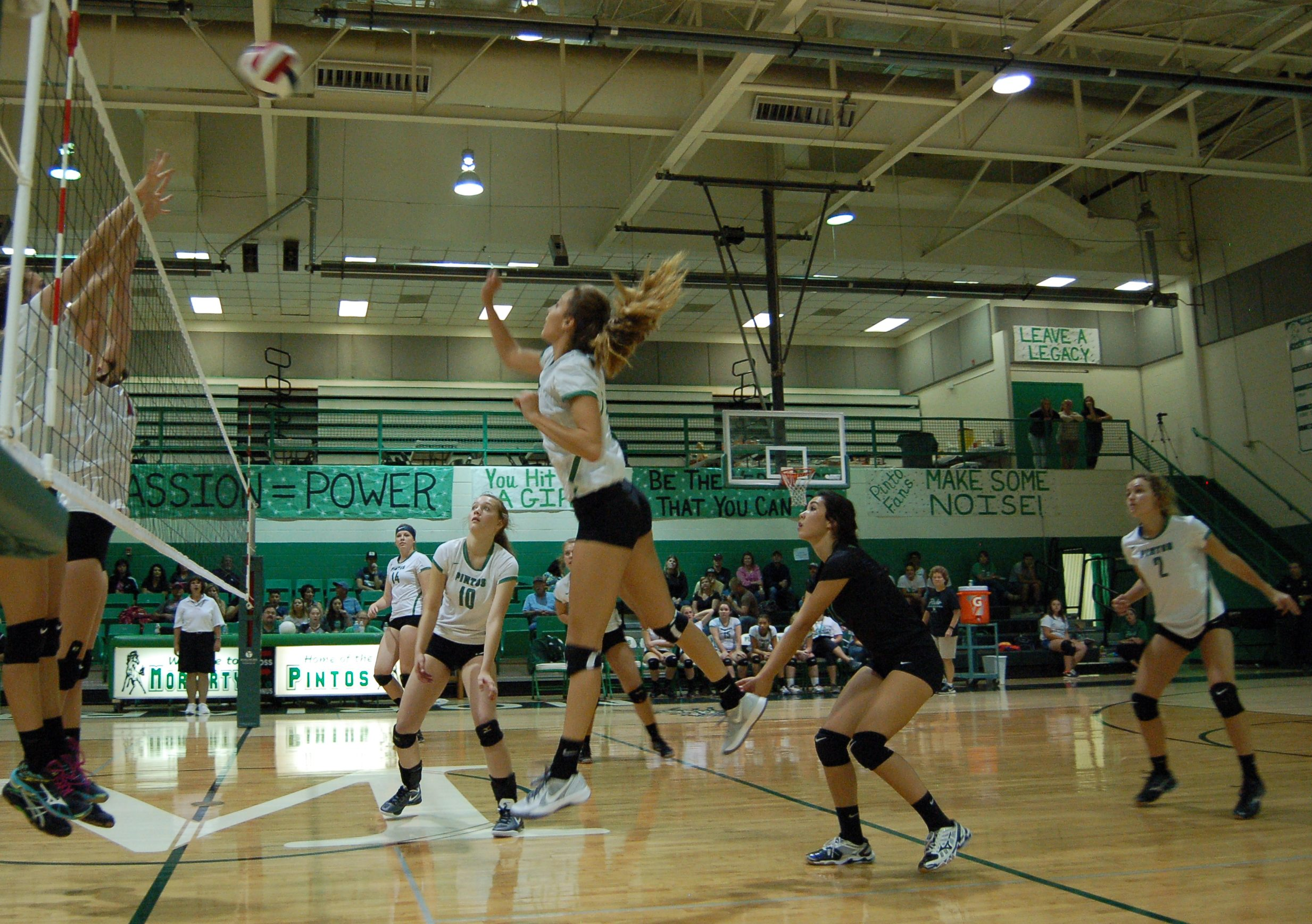 Lady Bears, Pintos pleased with performances at volleyball tournament