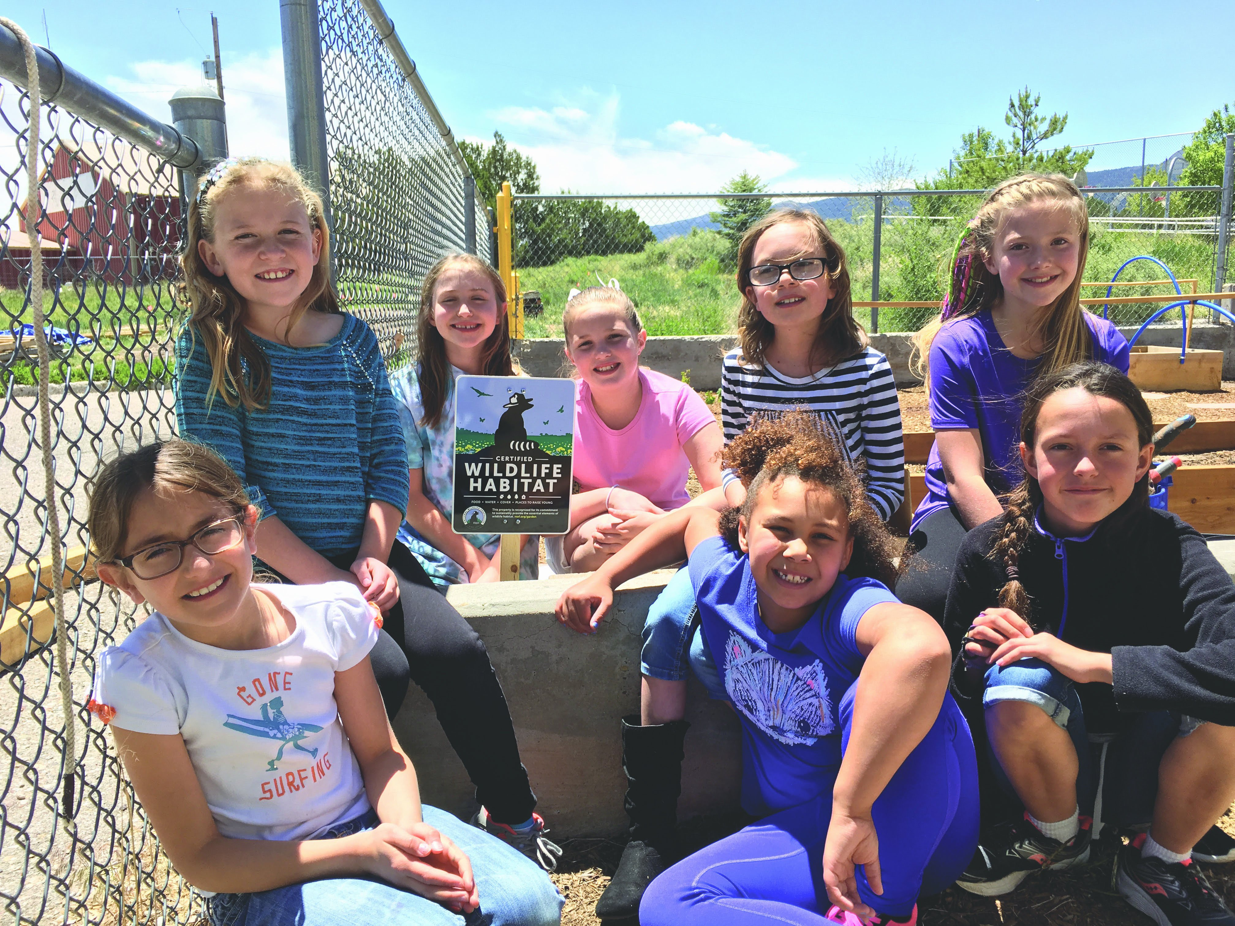 Girl Scouts create STEM wildlife habitat