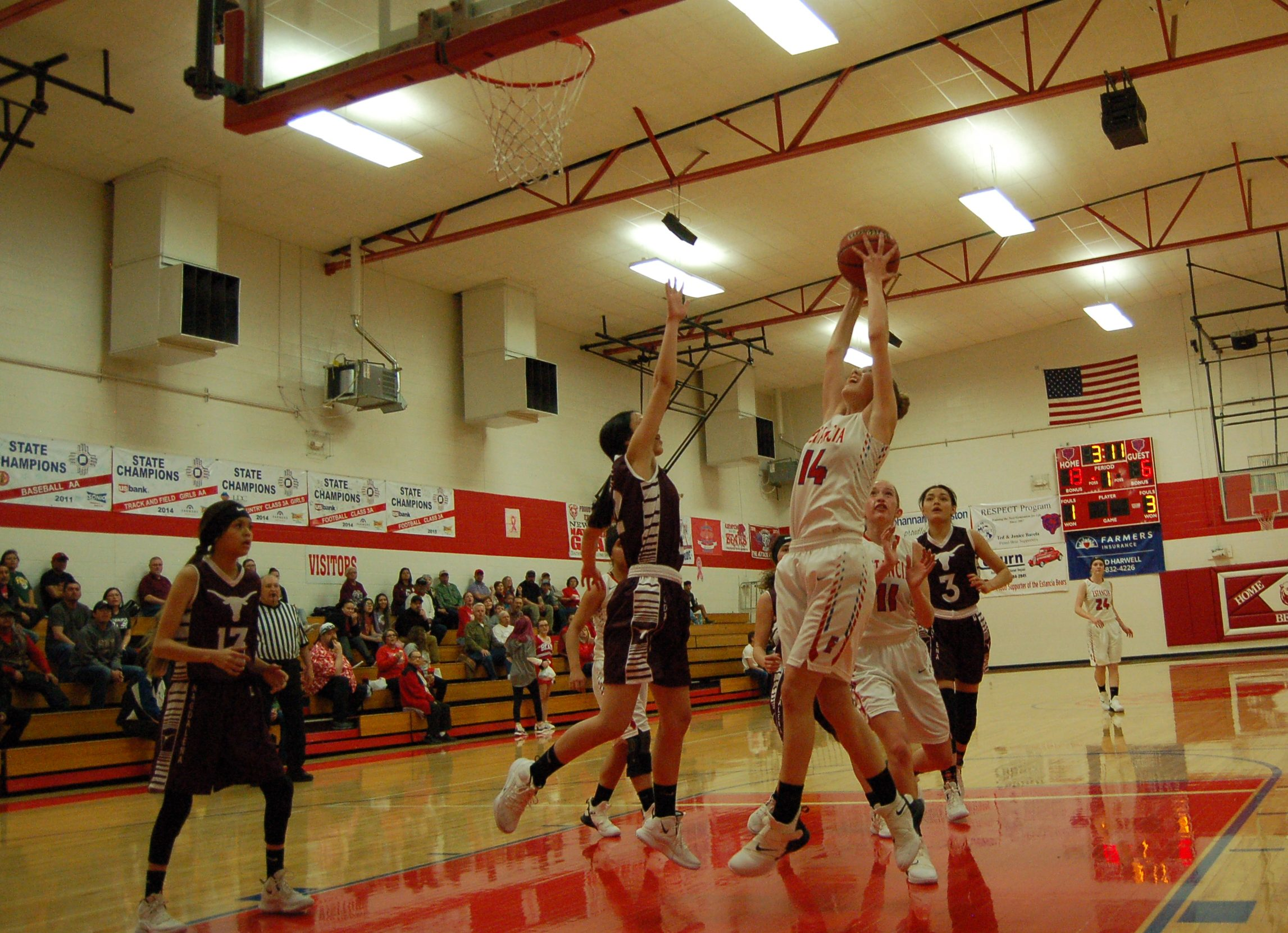 Lady Bears fall in district championship but get No. 5 seed at state