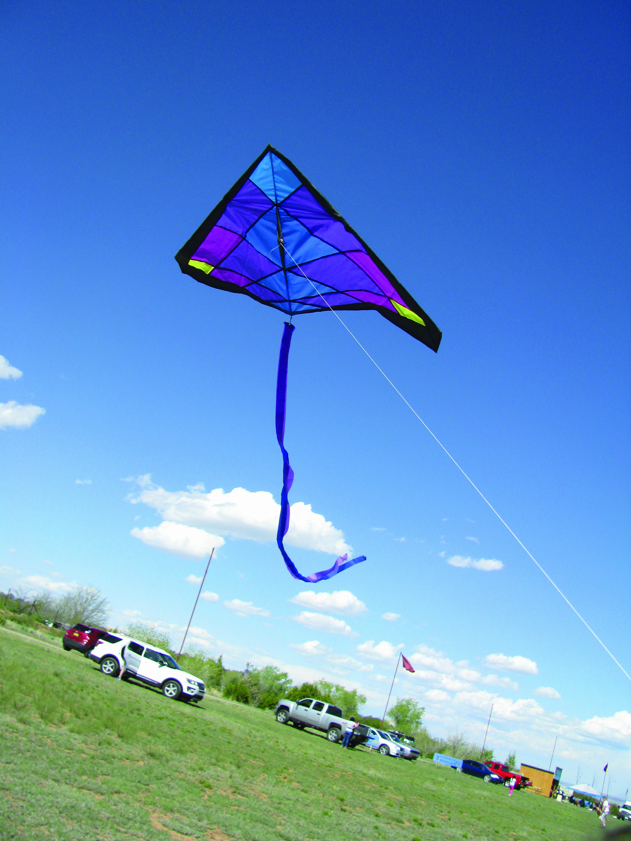 Close to Home: Flying kites at Wildlife West