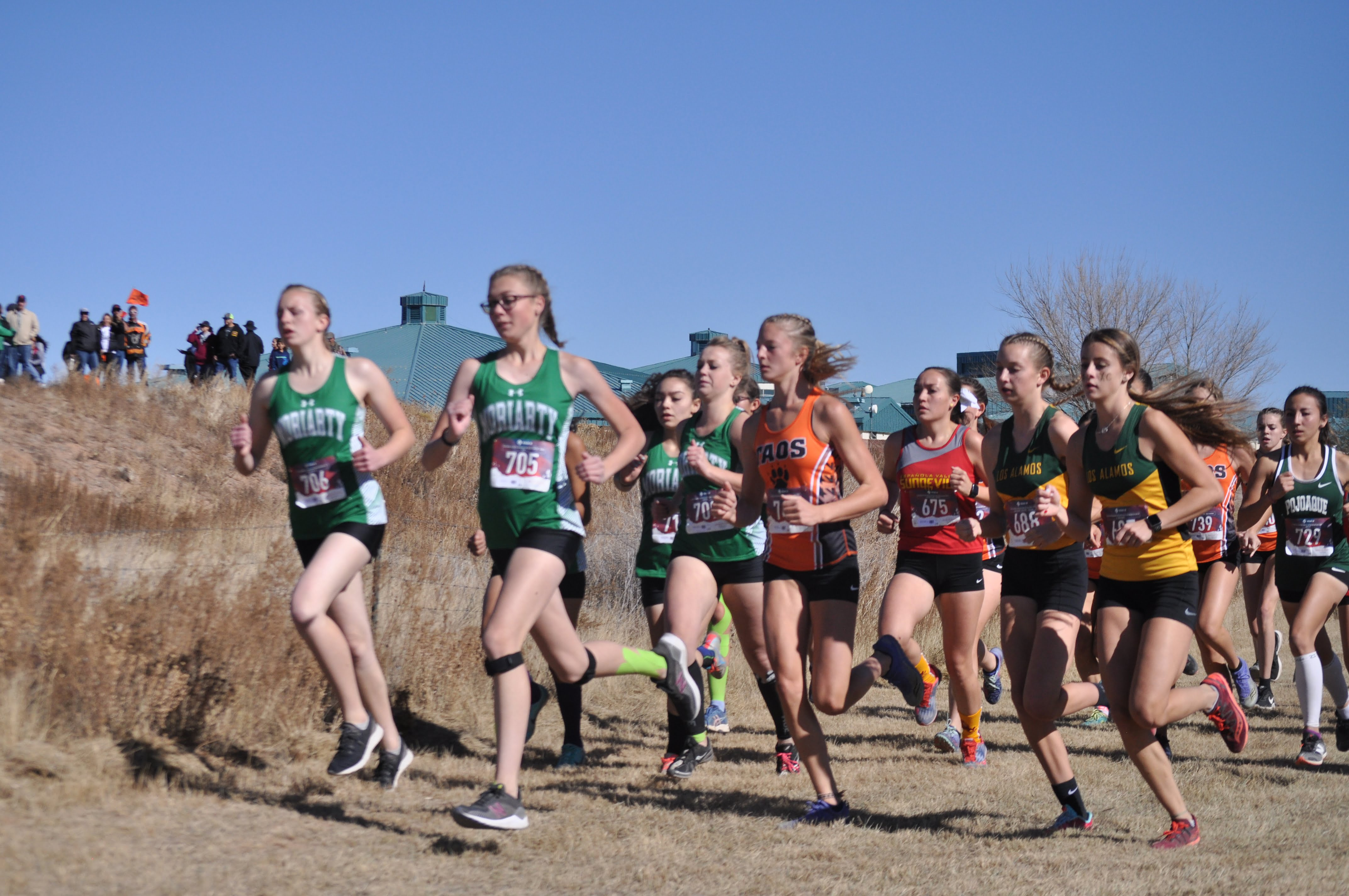Area high school runners qualify for cross country state championships