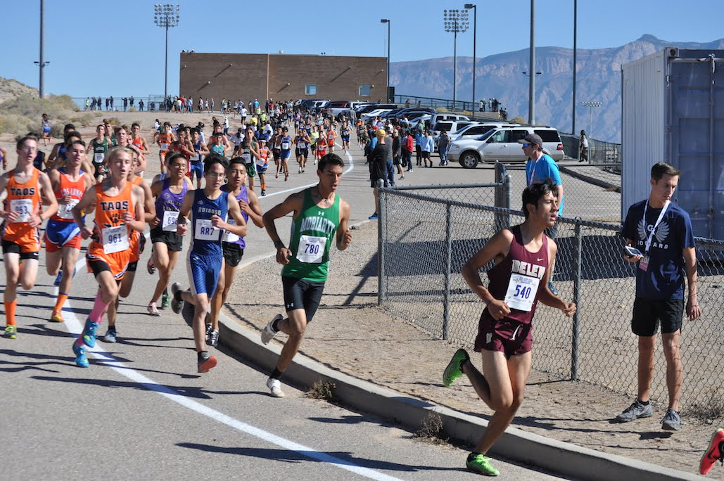 East Mountain's Case takes fourth, other area runners impress at state cross country championships