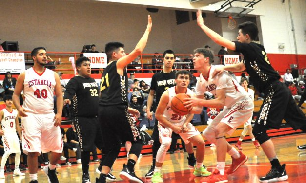 Estancia Bears have 'rough night' in loss to Mesa Vista