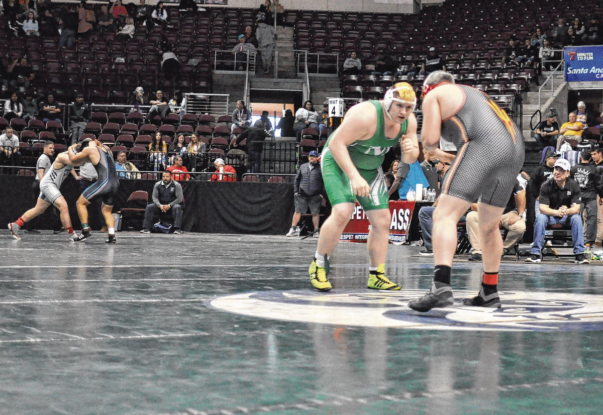 Six Pintos and T'Wolf grappler place at state
