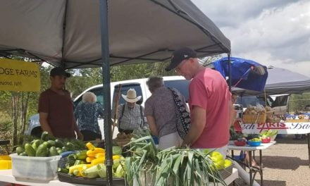 Farmer's markets as essential businesses poised to open
