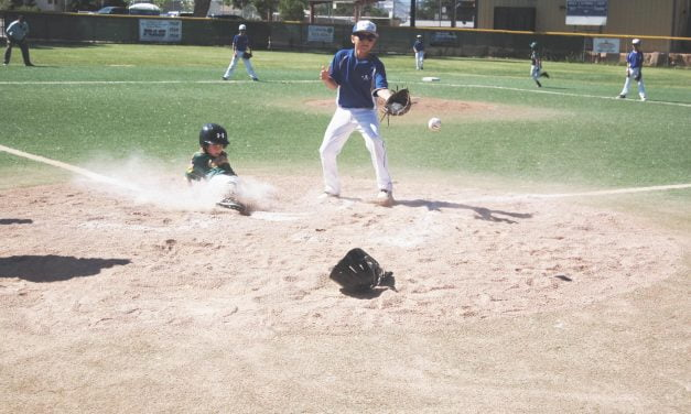 Season in limbo but area Little Leagues  hope they can play ball