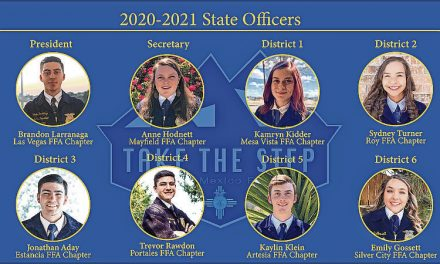Estancia senior elected to state FFA office