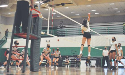 Volleyball is back and it's 'like nothing any of us have ever done'