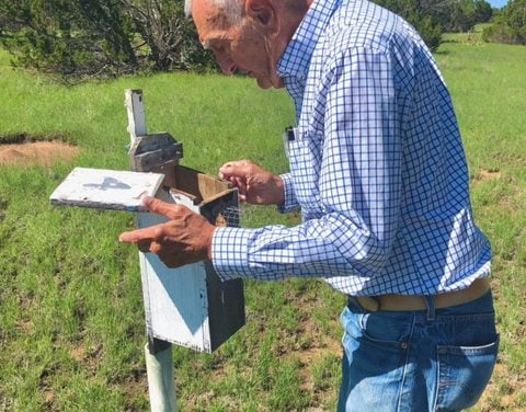 Bill Simms: Turning a hobby into advocacy for Western bluebird population