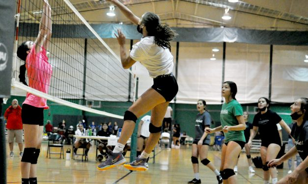 Moriarty's first summer volleyball tournament in two years: 'It's great to be back'